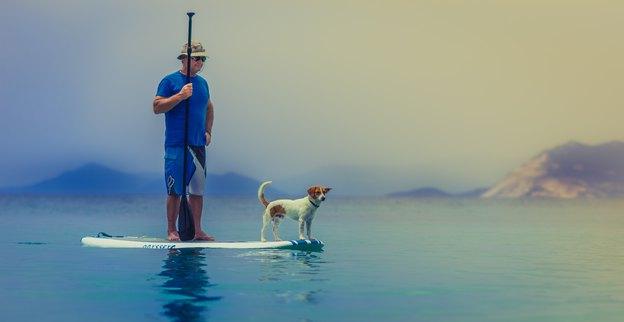 سگ ها با این ده روش ابراز عشق می کنند