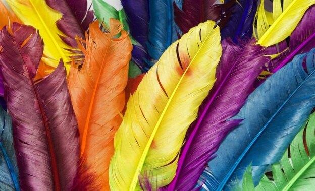 راهنمای مشتریان سنجاق: گالری ترکیب بندی رنگ ها