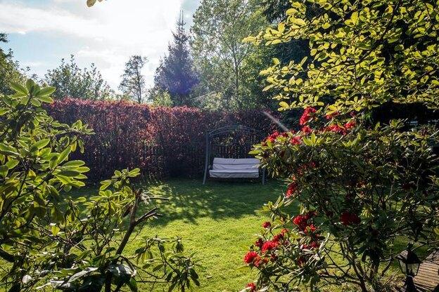 ۵ راه برای باغچه آرایی و زیباتر نمودن فضای سبز خانه تان