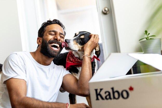 روش تهیه ۳ غذای سگ در خانه