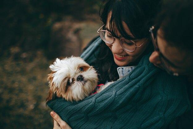 چه چیزهایی برای سگ خوب است؟