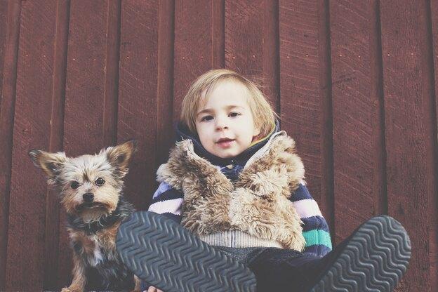 بدترین و بهترین نژاد سگ خانگی برای سگ اولی ها