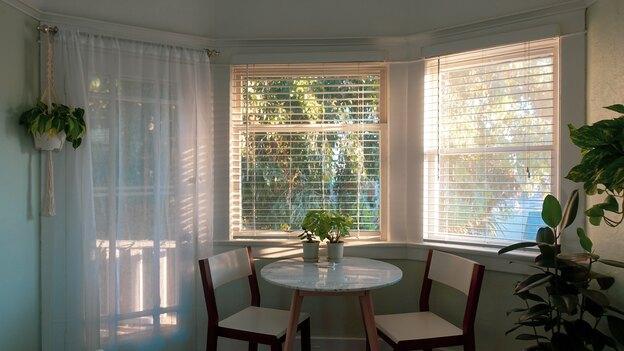 چه کاری در نگهداری گیاهان آپارتمانی اشتباه است؟