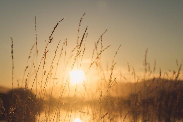 راهنمای کامل آفتاب گرفتن و برنزه کردن سریع و ایمن