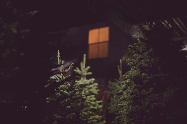 مزایا و معایب انواع پنجره