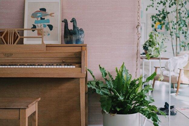آموزش موسیقی: یادگیری پیانو