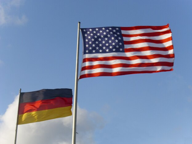 بیایید بفهمیم سوسک آلمانی داریم یا آمریکایی