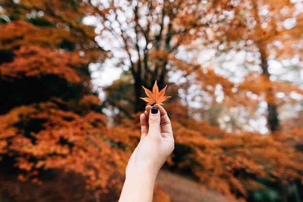 رنگ لاک پاییزی