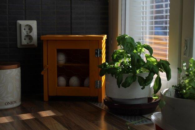 حرکت های مینیمال در طراحی کابینت آشپزخانه