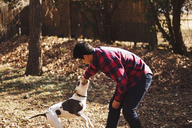 کدام نژاد سگ آسان تر تربیت می شود؟