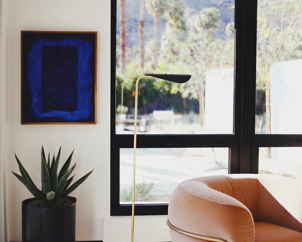 راهنمای کامل نگهداری از گیاهان آپارتمانی