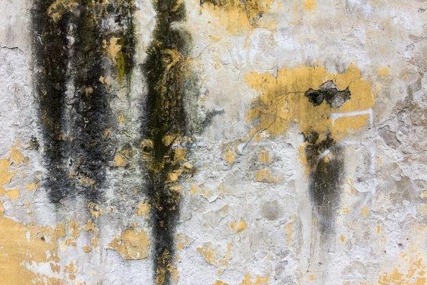 روش پاک کردن انواع لکه های دیوار