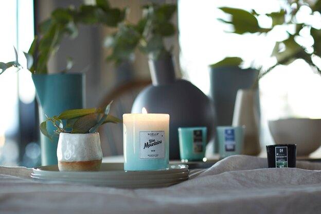 قالیشویی: پاک کردن شمع از روی فرش