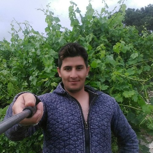 حمزه نوروزی