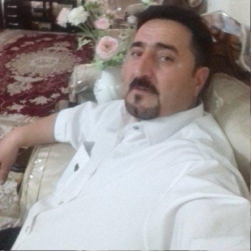 محمد طلوعی