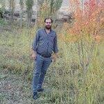 مصطفی علیزاده