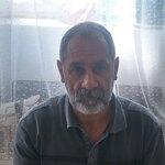 محمد سیفی