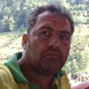 محمد رضا  جهانی