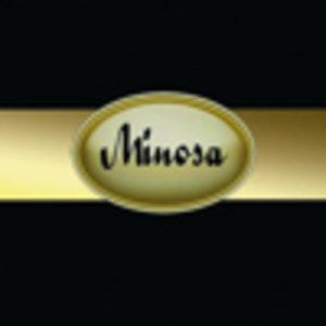 شرکت مهندسی مینوسا