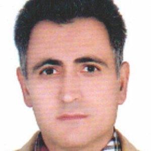 علی  ملک محمدی