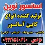 محسن نژادی