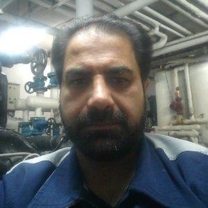 محمود ارگنجی