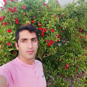 ایوب محمدی