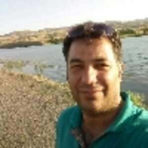 محسن میرزایی