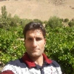 سعید مهرگان