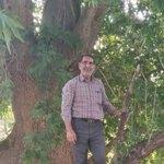 محمود دهقان