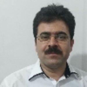 منوچهر محمودی