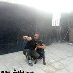 حامد حمیدی