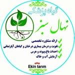 گیاه پزشکی نهال سبز