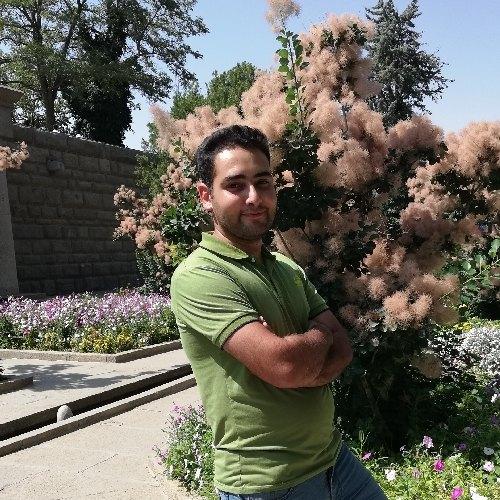 محمد رضا شفیعی