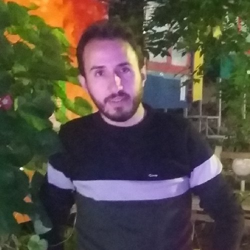 رضا  سادین