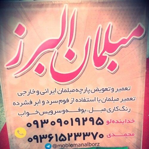 پویا محمدی