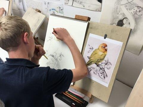 هزینه آموزش نقاشی